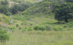 Near Koumac